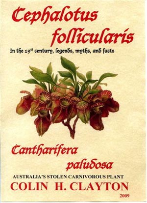 Cephalotus follicularis – In the 19th century, legends, myths, and facts