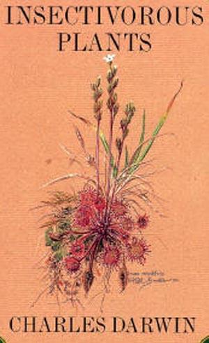 Le piante insettivore