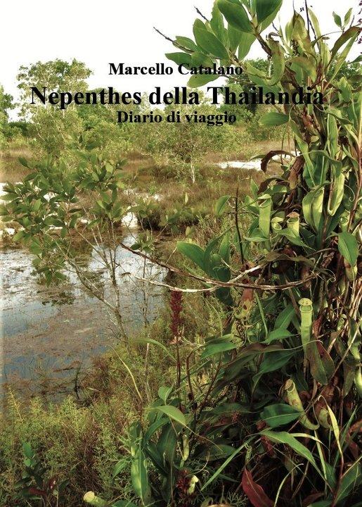 Nepenthes della Thailandia