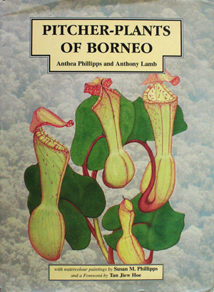Pitcher plants of Borneo