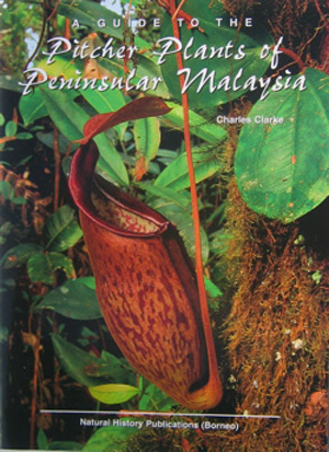 Pitcher plants of the peninsular Malaysia