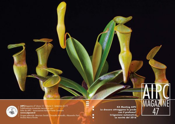 AIPCMagazine_Cover47
