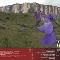 AIPCMagazine 2/2020