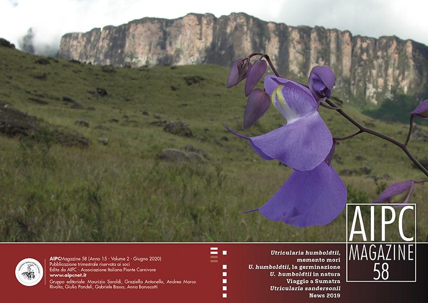 AIPCMagazine_Cover58
