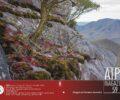 AIPCMagazine 3/2020