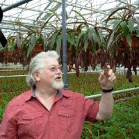 Lutto nel mondo delle piante carnivore